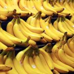 """Banano producido en EARTH se vende como """"el mejor"""" en Estados Unidos y Canadá"""