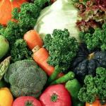 Lincoln Plaza abrirá las puertas a nueva feria de productos orgánicos este fin de semana