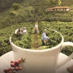 Avianca lanza promoción a Colombia por $358