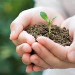 ¿Puede el Gobierno poner a disposición la tecnología a favor del Medio Ambiente?