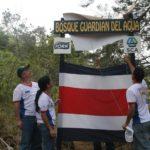 25.000 árboles rescatan Cerro La Trinidad