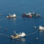 Convenio entre el INA-FECOP-INCOPESCA buscan mejoras en la pesca de atún en el país