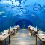 Restaurantes nuevos que se salen del molde