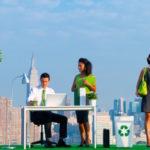 7 pasos para conseguir una PYME ecológica en 24 horas