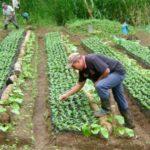 Pequeños productores y mipymes contarán con mayor acceso a crédito
