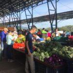 Ferias del Agricultor ticas serán ejemplo para Latinoamérica