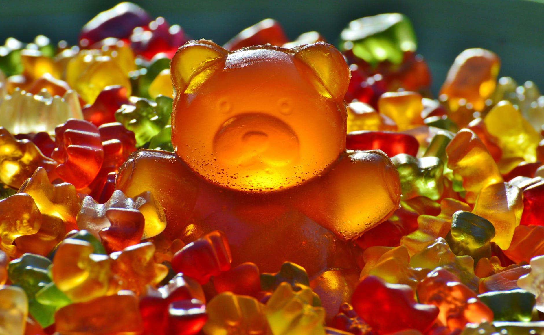 https://www.ekaenlinea.com/wp-content/uploads/2018/07/giant-rubber-bear-gummibar-gummibarchen-fruit-gums.jpg