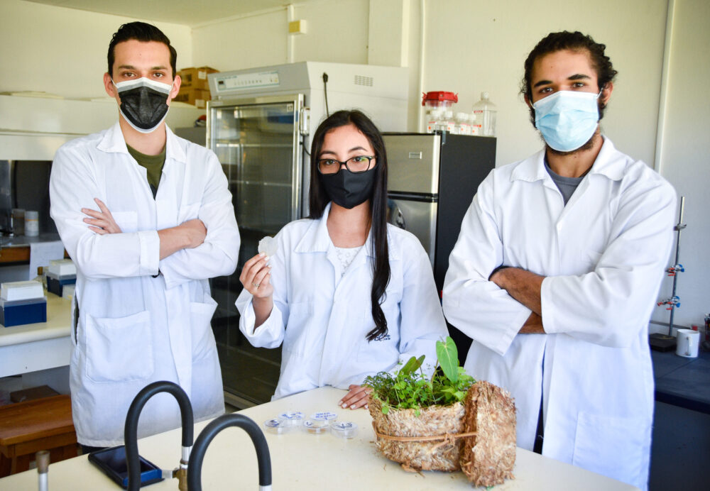 productos biodegradables utilizando residuos orgánicos y hongos.