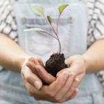 Financiamiento para mujeres que trabajen por la biodiversidad